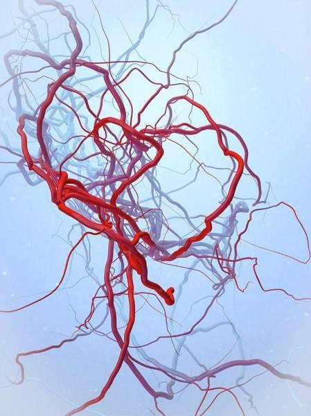 Arteries Art Print by Maurizio De Angelis