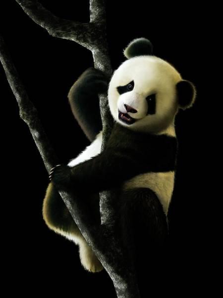 Ursidae Wall Art - Photograph - Artwork Of Juvenile Giant Panda by Mark Garlick/science Photo Library