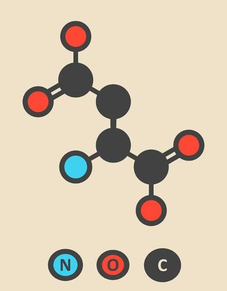 Asps Photograph - Aspartic Acid Molecule by Molekuul