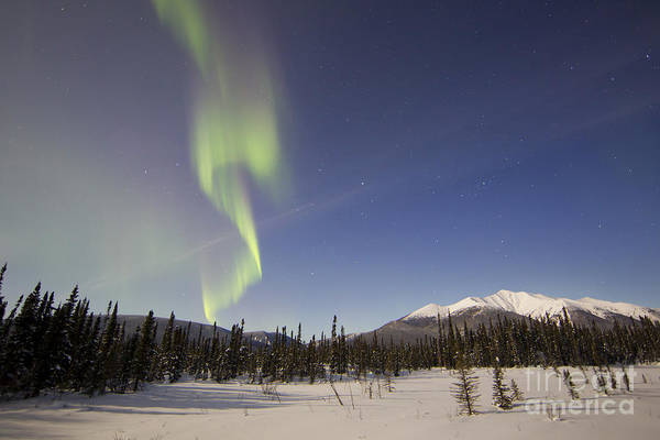 Photograph - Aurora Borealis Over Mountain by Joseph Bradley