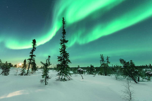 Yellowknife Wall Art - Photograph - Aurora With Moon Rising by Michael Ericsson