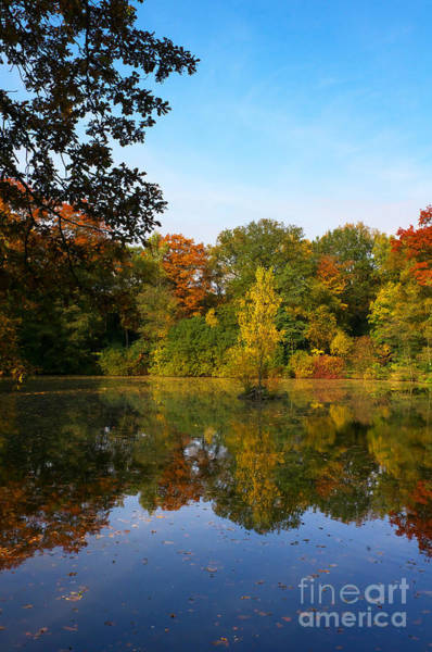 Photograph - Autumn At The Lake by Angela Doelling AD DESIGN Photo and PhotoArt