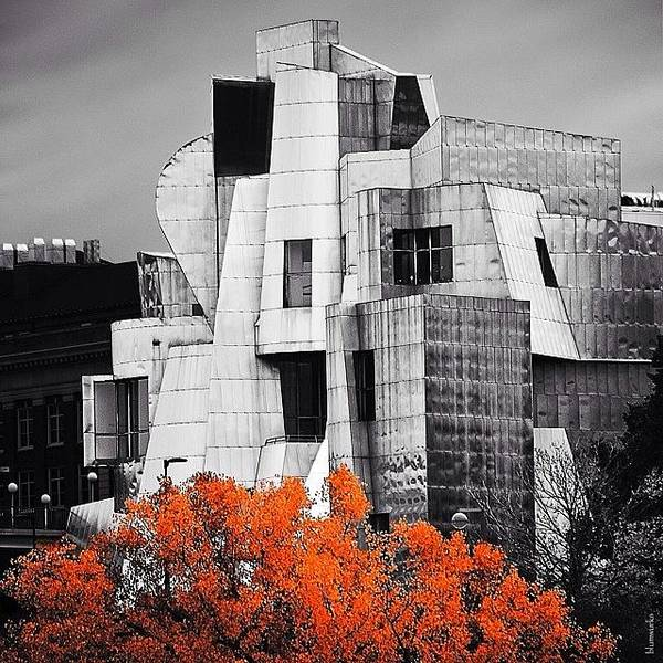 Wall Art - Photograph - Autumn At The Weisman by Matthew Blum