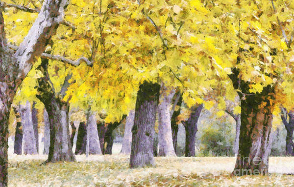 Painting - Autumn In Park by Odon Czintos