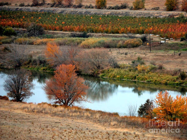 Photograph - Autumn In The Valley by Carol Groenen