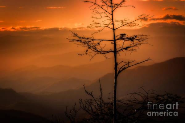 Photograph - Autumn Stillness by Deborah Scannell