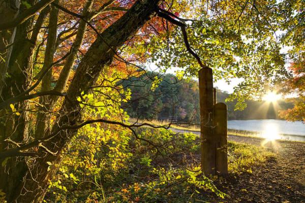 Ocoee Photograph - Autumn Trail by Debra and Dave Vanderlaan