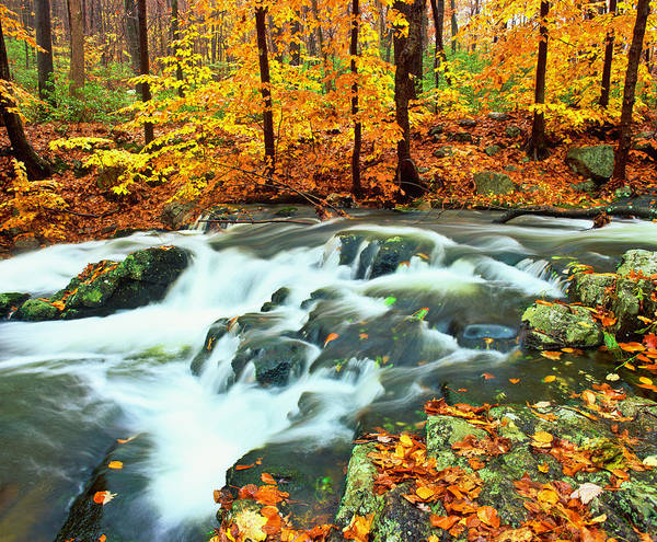 Waters Edge Photograph - Autumn Waterfall In New York by Ron thomas