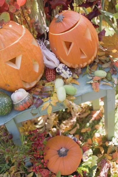 Cucurbit Photograph - Autumnal Garden Decoration With Pumpkins by Foodcollection