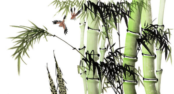 Calligraphy Digital Art - Bamboo by Vii-photo