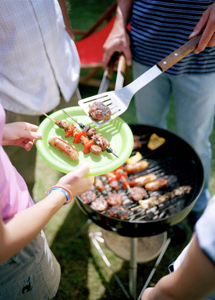 Barbecue Photograph - Barbecue by Martin Riedl/science Photo Library