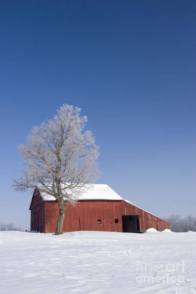 Photograph - Barn In Winter by Jim West
