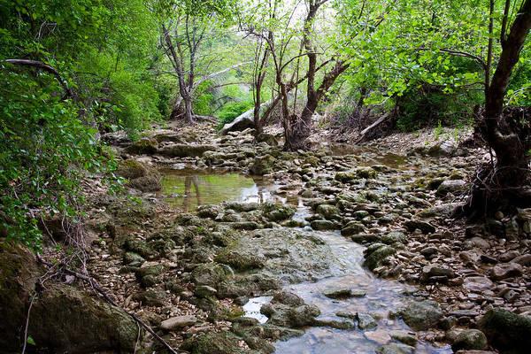Austin Photograph - Barton Creek Greenbelt by Mark Weaver