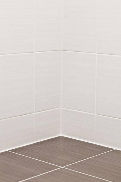 Bath Room Wall Art - Photograph - Bathroom Tiles by Tom Gowanlock