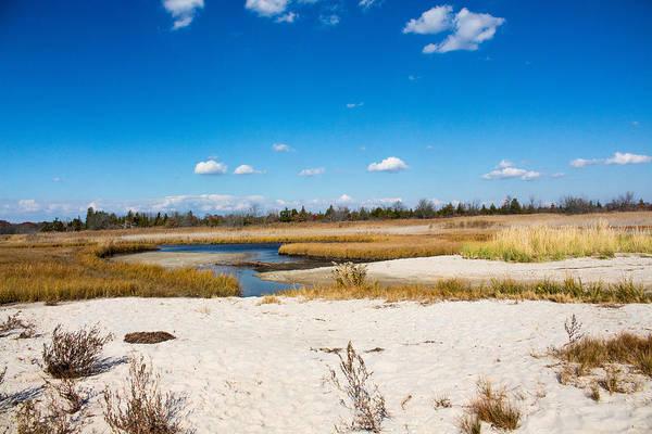 Photograph - Beach At Gardinerdog Park by Susan Jensen