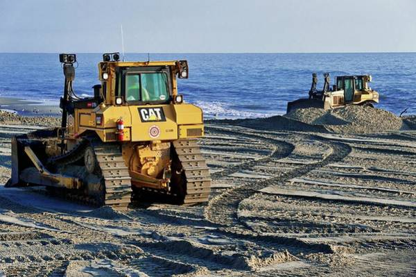 Corolla Photograph - Beach Conservation by John Greim/science Photo Library