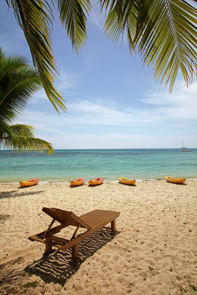 Foreshore Photograph - Beach, Palm Trees And Lounger by David Wall