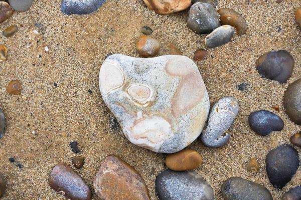 Geological Photograph - Beach Pebbles by Tom Gowanlock