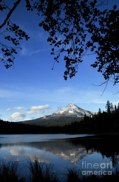 Photograph - Beautiful Mt. Hood And Lake by Charmian Vistaunet