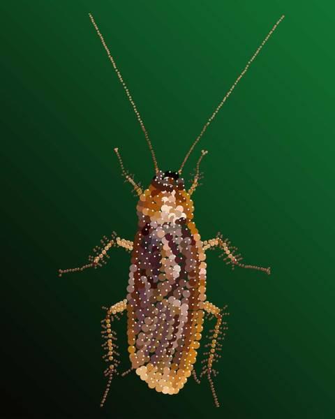 Revolting Digital Art - Bedazzled Roach by R  Allen Swezey