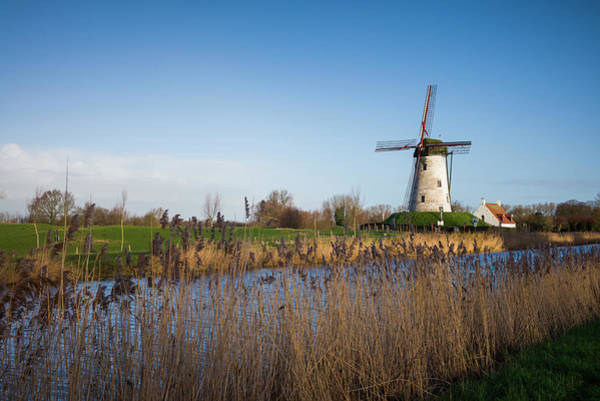 Wall Art - Photograph - Belgium, Damme Old Wind Mill by Walter Bibikow