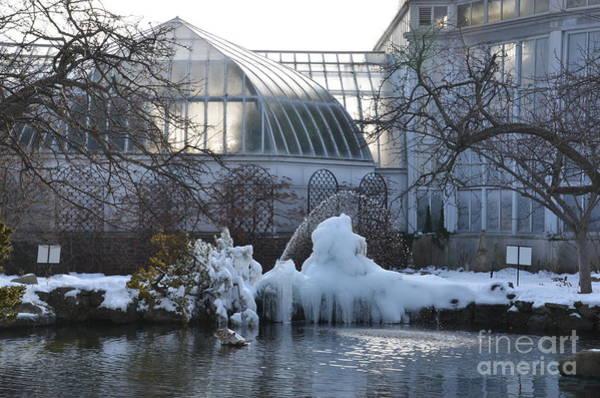 Photograph - Belle Isle Conservatory Pond 2 by Randy J Heath