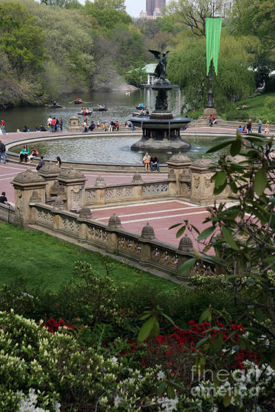 Wall Art - Photograph - Bethesda Fountain - Central Park Nyc by Christiane Schulze Art And Photography