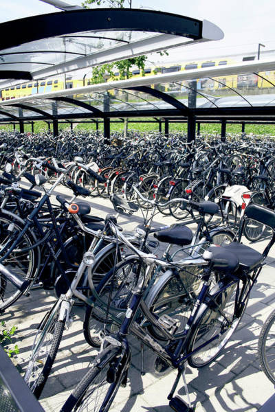 Bicycle Rack Photograph - Bicycle Park by Chris Martin-bahr/science Photo Library