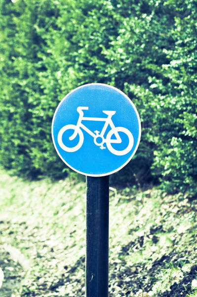 Notice Board Photograph - Bicyle Route by Tom Gowanlock