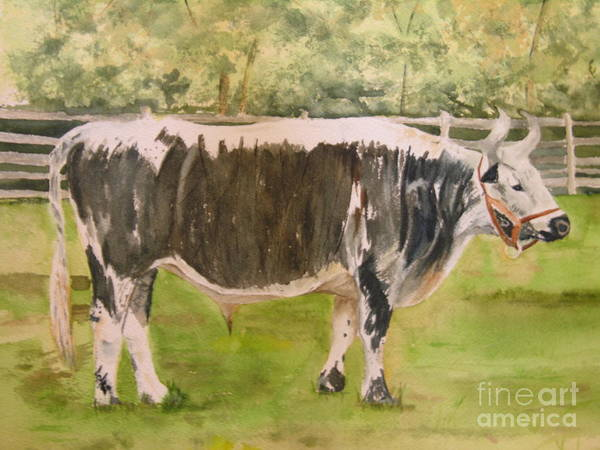 Painting - Bill's Bull by Peggy Dickerson