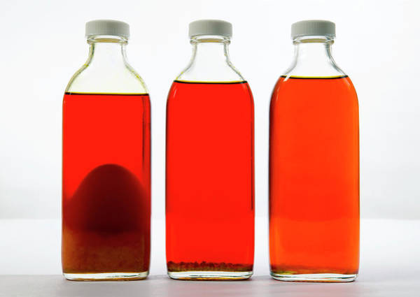 Bottle Green Photograph - Biofuel Research by Colin Cuthbert/science Photo Library