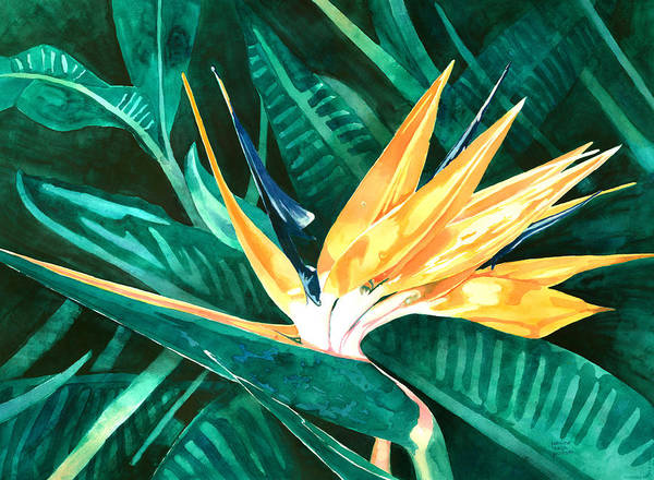 Painting - Bird Of Paradise by Pauline Walsh Jacobson