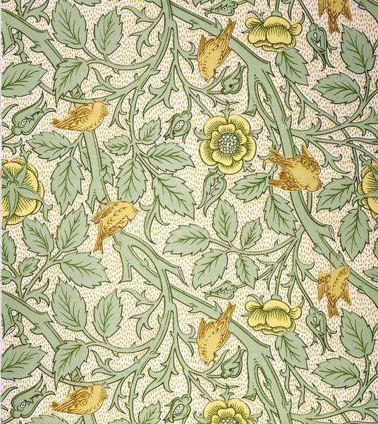 Floral Design Drawing - Bird Wallpaper Design by William Morris