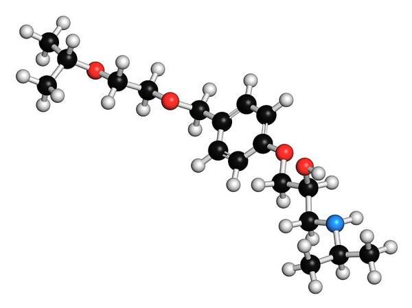 Cardiovascular Disease Wall Art - Photograph - Bisoprolol Beta Blocker Drug Molecule by Molekuul