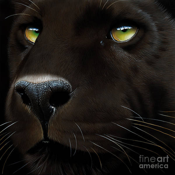 Wall Art - Painting - Black Leopard by Jurek Zamoyski