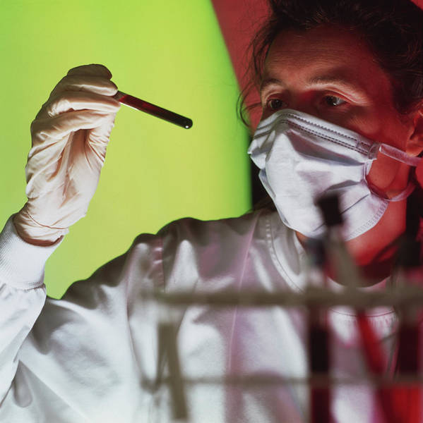 Researcher Wall Art - Photograph - Blood Sample by Cc Studio/science Photo Library