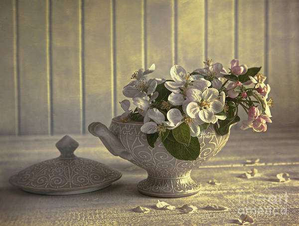 Photograph - Blossoms On Porcelain Vase by Sandra Cunningham