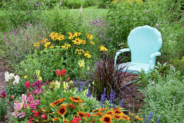 Pennisetum Photograph - Blue Chair And Various Flowers by Panoramic Images