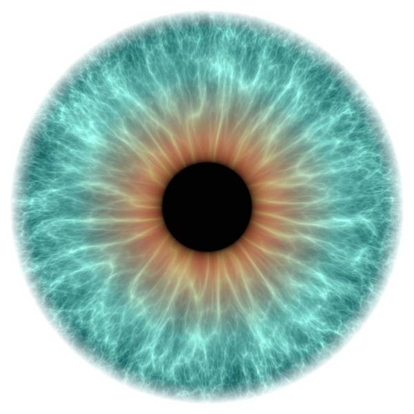 Wall Art - Photograph - Blue Eye by Alfred Pasieka/science Photo Library