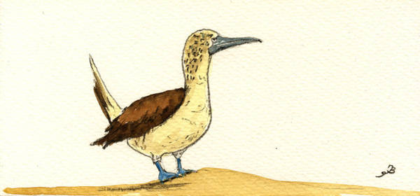 Blue Footed Booby Wall Art - Painting - Blue Footed Booby by Juan  Bosco