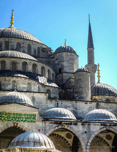 Photograph - Blue Mosque by Ross Henton