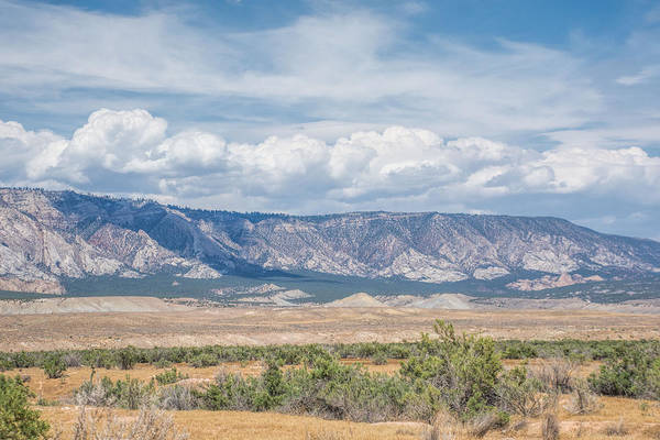 Photograph - Blue Mountain Range by Jeanne May