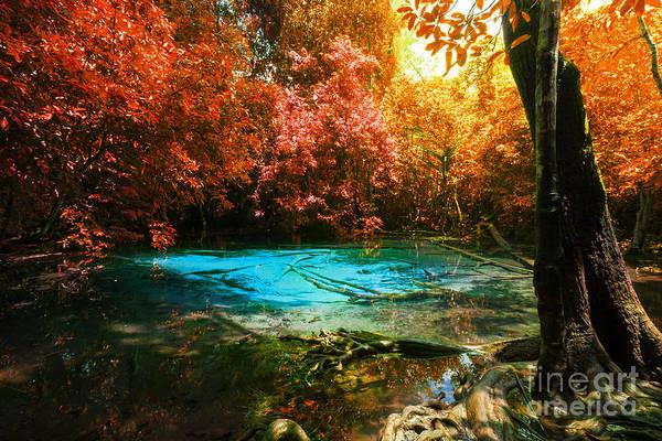Wall Art - Photograph - Blue Pool by Atiketta Sangasaeng