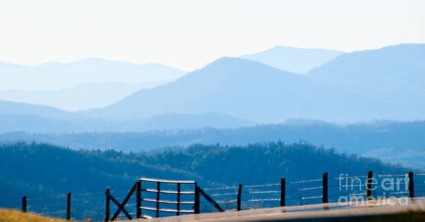 Photograph - Blue Ridge Mountains by Les Palenik