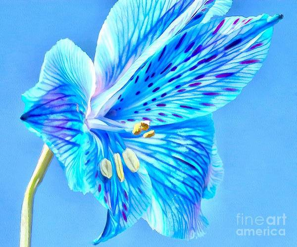 Amaryllis Photograph - Blue Summer by Krissy Katsimbras