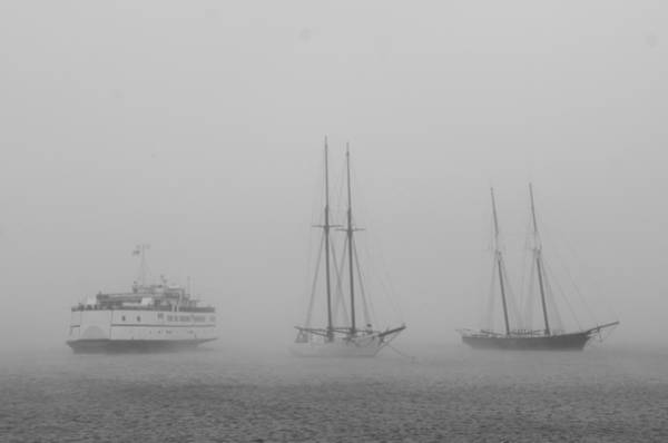 Photograph - Boats In Fog by Steve Myrick