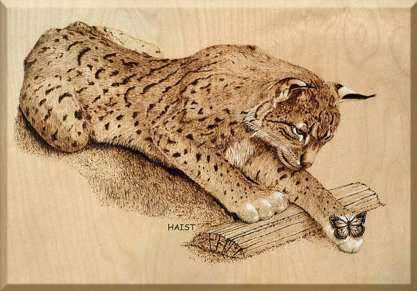 Pyrography Wall Art - Pyrography - Bobcat And Friend by Ron Haist