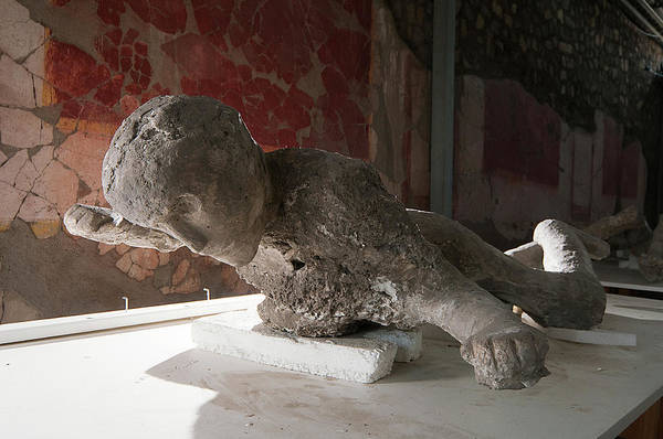 Impression Photograph - Body Cast Of A Victim Of The Pompeii Eruption by Pasquale Sorrentino/science Photo Library