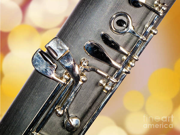 Photograph - Bassoon Music Instrument Fine Art Prints Canvas Prints Greeting Cards In Color 3422.02 by M K Miller
