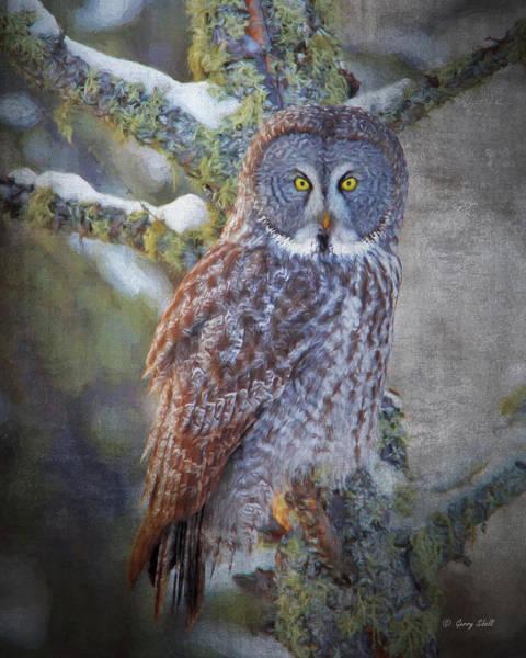 Digital Art - Bog Hunter by Gerry Sibell